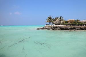 Cheap flights to Paradise Island: Hamburg to Zanzibar starting from 527 Eur for return flight