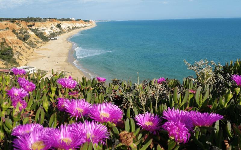Summer break in Portugal: Dublin to Faro from 121 Eur for return ticket